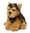 Peluche Anna Club Plush Chien Yorkshire 28 cm